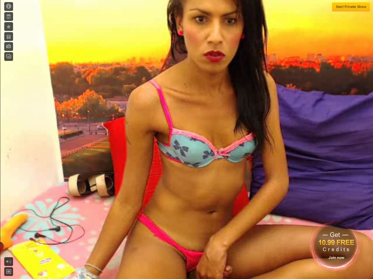 Screenshot of Skinny Webcam Shemale with Small Tits